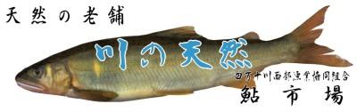 ayu-top01