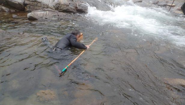 鮎のしゃくり漁(目黒川)