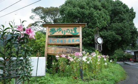 ゆり街道(薮ケ市)